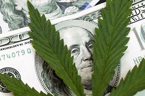 Marijuana business for sale